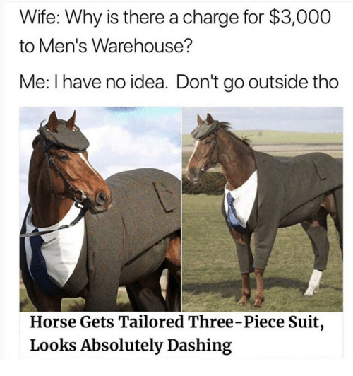 Warehouse: Wife: Why is there a charge for $3,000  to Men's Warehouse?  Me: I have no idea. Don't go outside tho  Horse Gets Tailored Three-Piece Suit,  Looks Absolutely Dashing