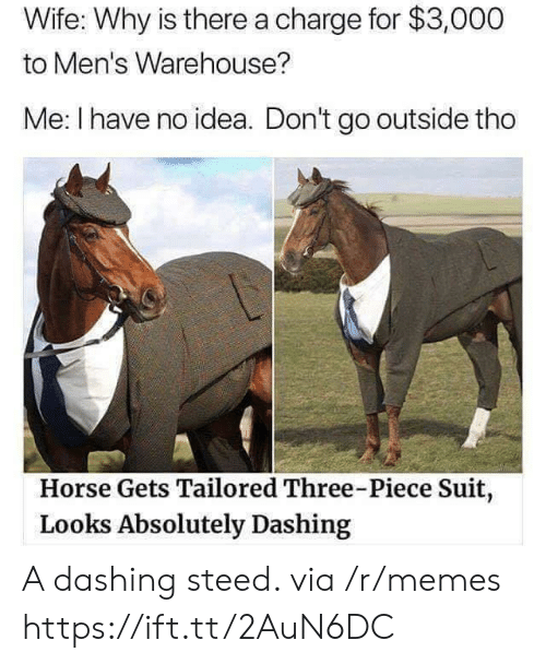 Warehouse: Wife: Why is there a charge for $3,000  to Men's Warehouse?  Me: I have no idea. Don't go outside tho  Horse Gets Tailored Three-Piece Suit,  Looks Absolutely Dashing A dashing steed. via /r/memes https://ift.tt/2AuN6DC