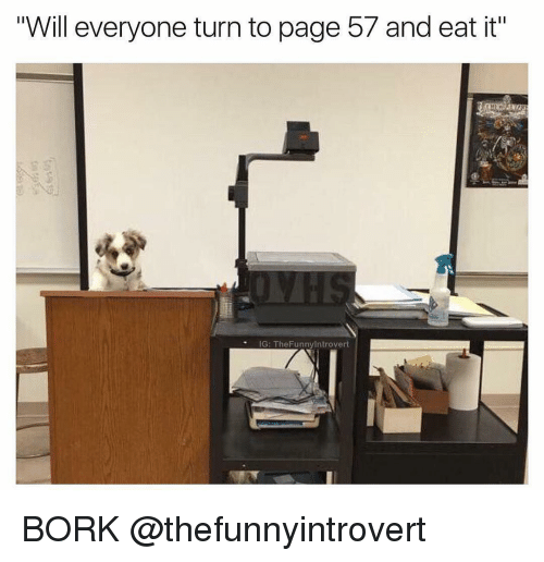 """Børk: Will everyone turn to page 57 and eat it""""  IG: The Funnylntrovert BORK @thefunnyintrovert"""