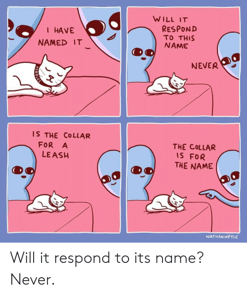 Collar: WILL IT  RESPOND  TO THIS  NAME  I HAVE  NAMED IT  NEVER  IS THE COLLAR  FOR A  LE ASH  THE COLLAR  IS FOR  THE NAME  NATHANWPYLE Will it respond to its name? Never.