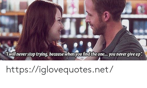 Never, Net, and One: will never stop trying, because whenyou find the one... you never giveup https://iglovequotes.net/