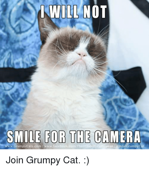 smile for the camera: WILL NOT  SMILE FOR THE CAMERA  com T  Rea Grumpy Cat  www.Grumpy Cats.com www.face Join Grumpy Cat. :)