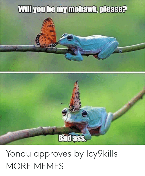 Approves: Will you be my mohawk, please?  Badass. Yondu approves by Icy9kills MORE MEMES