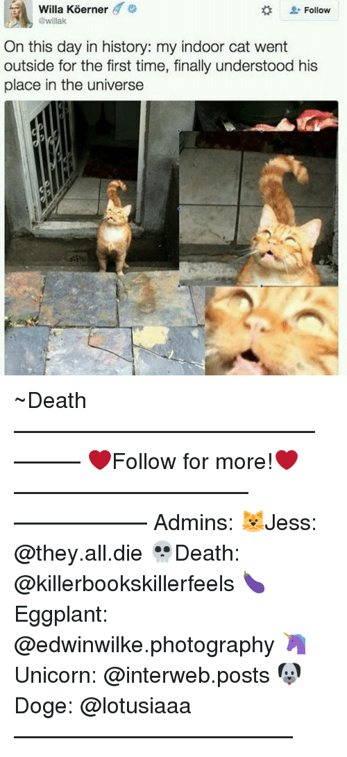 interweb: Willa Koerner  6  Follow  @willak  On this day in history: my indoor cat went  outside for the first time, finally understood his  place in the universe ~Death —————————————–——— ❤️Follow for more!❤️ ——————————–—————— Admins: 🐱Jess: @they.all.die 💀Death: @killerbookskillerfeels 🍆Eggplant: @edwinwilke.photography 🦄Unicorn: @interweb.posts 🐶Doge: @lotusiaaa ——————————–——