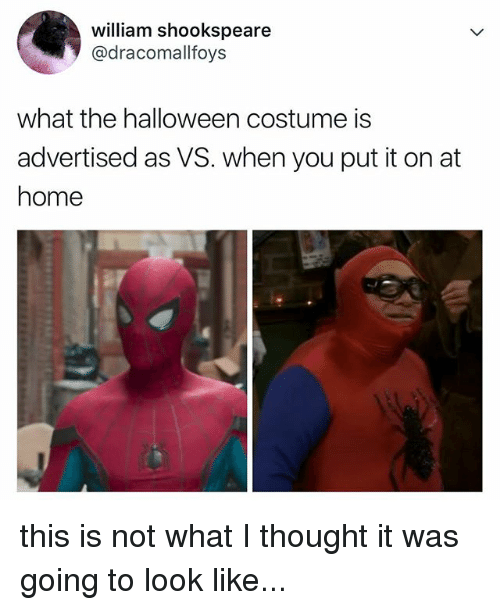 What I Thought: william shookspeare  @dracomallfoys  what the halloween costume is  advertised as VS. when you put it on at  home  ar this is not what I thought it was going to look like...