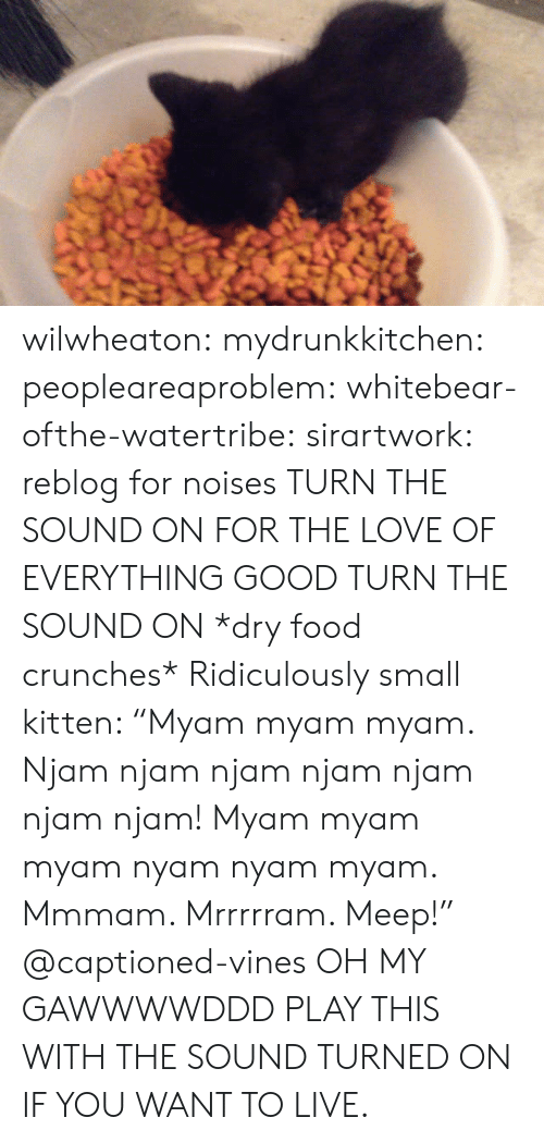 "Dry Food: wilwheaton: mydrunkkitchen:  peopleareaproblem:  whitebear-ofthe-watertribe:  sirartwork:  reblog for noises  TURN THE SOUND ON FOR THE LOVE OF EVERYTHING GOOD TURN THE SOUND ON   *dry food crunches* Ridiculously small kitten: ""Myam myam myam. Njam njam njam njam njam njam njam! Myam myam myam nyam nyam myam. Mmmam. Mrrrrram. Meep!"" @captioned-vines   OH MY GAWWWWDDD  PLAY THIS WITH THE SOUND TURNED ON IF YOU WANT TO LIVE."