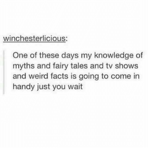 Onee: winchesterlicious:  One of these days my knowledge of  myths and fairy tales and tv shows  and weird facts is going to come in  handy just you wait
