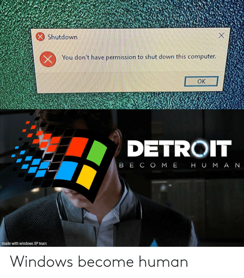 Windows: Windows become human