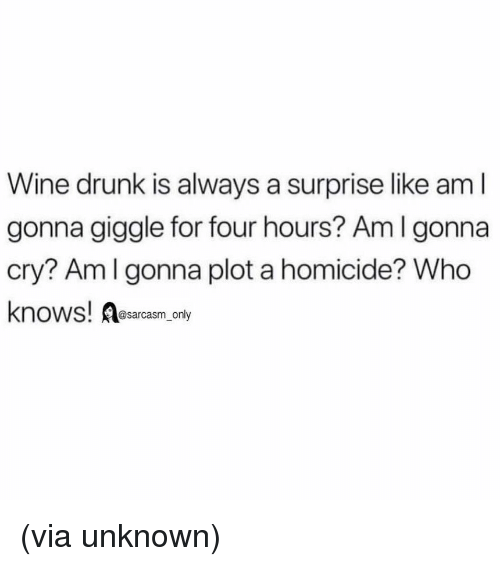 Drunk, Funny, and Memes: Wine drunk is always a surprise like am l  gonna giggle for four hours? Am I gonna  cry? Amlgonna plot a homicide? Who  knows! Aesarcasm ny (via unknown)