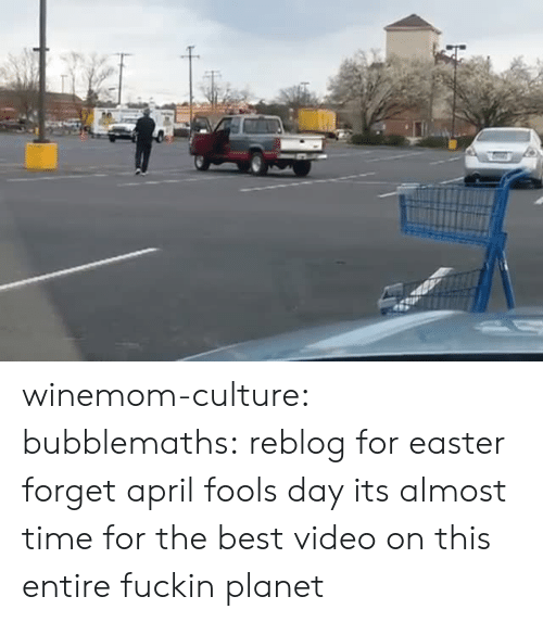 April Fools: winemom-culture: bubblemaths: reblog for easter forget april fools day its almost time for the best video on this entire fuckin planet