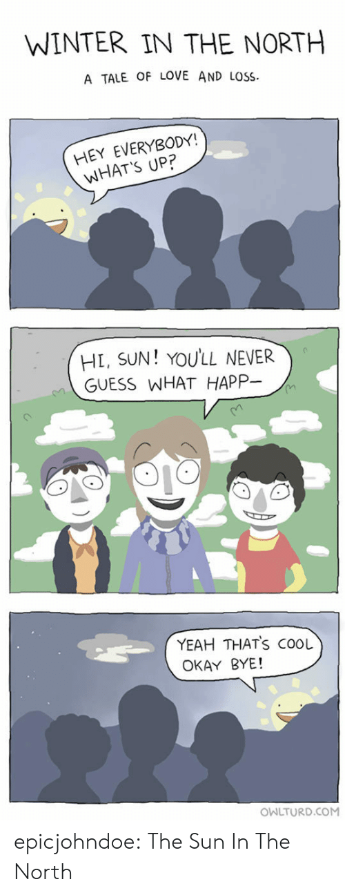 Owlturd: WINTER IN THE NORTH  A TALE OF LOVE AND LOSS  HEY EVERYBODY!  WHAT'S UP?  HL, SUN! YOULL NEVER  GUESS WHAT HAPP-  YEAH THATS COOL  OKAY BYE!  OWLTURD.COM epicjohndoe:  The Sun In The North