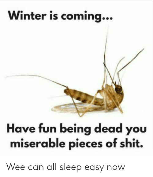 Shit, Wee, and Winter: Winter is coming...  Have fun being dead you  miserable pieces of shit. Wee can all sleep easy now