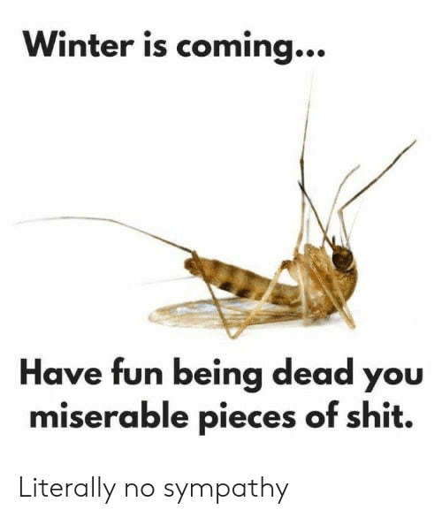 have fun: Winter is coming...  Have fun being dead you  miserable pieces of shit. Literally no sympathy