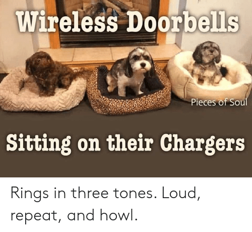 loud: Wireless Doorbells  Pieces of Soul  Sitting on their Chargers Rings in three tones. Loud, repeat, and howl.