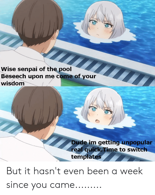 Anime, Dude, and Pool: Wise senpai of the pool  Beseech upon me come of your  wisdom  Dude im getting unpopular  real quick Time to switch  templates But it hasn't even been a week since you came.........