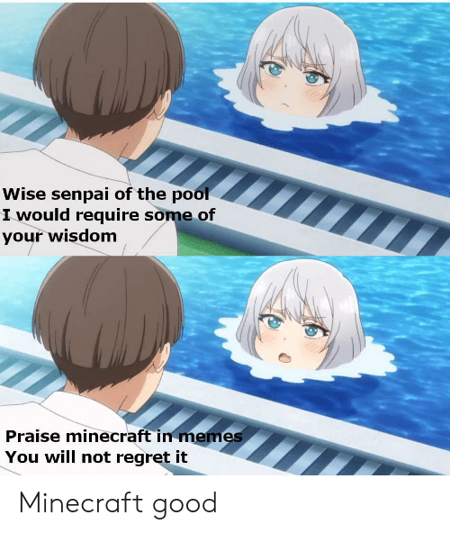Anime, Memes, and Minecraft: Wise senpai of the pool  I would require some of  your wisdom  Praise minecraft in memes  You will not regret it Minecraft good