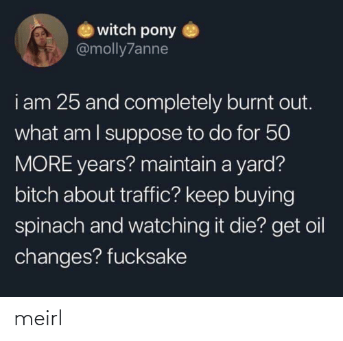 What Am I: witch pony  @molly7anne  i am 25 and completely burnt out.  what am I suppose to do for 50  MORE years? maintain a yard?  bitch about traffic? keep buying  spinach and watching it die? get oil  changes? fucksake meirl