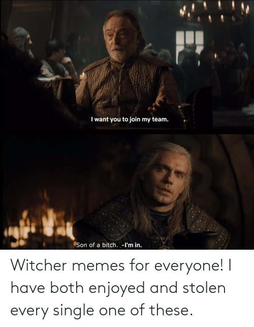 These: Witcher memes for everyone! I have both enjoyed and stolen every single one of these.