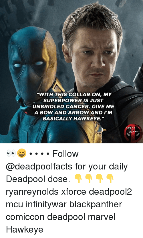 """Memes, Deadpool, and Cancer: WITH THIS COLLAR ON, MY  SUPERPOWER IS JUST  UNBRIDLED CANCER. GIVE ME  A BOW AND ARROWAND I'M  BASICALLY HAWKEYE.""""  DEADPOOL  FACT 👀😆 • • • • Follow @deadpoolfacts for your daily Deadpool dose. 👇👇👇👇 ryanreynolds xforce deadpool2 mcu infinitywar blackpanther comiccon deadpool marvel Hawkeye"""