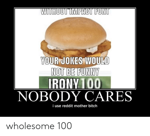 Bitch, Funny, and Reddit: WITHOUT IMPACT FONT  YOUR JOKES WOULD  NOT BE FUNNY  IRONY 100  NOBODY CARES  i use reddit mother bitch wholesome 100