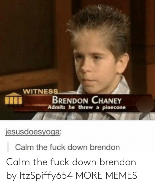 the fuck: WITNESS  BRENDON CHANEY  Admits he threw a pinecone  jesusdoesyoga:  Calm the fuck down brendon Calm the fuck down brendon by ItzSpiffy654 MORE MEMES