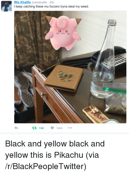 Black and Yellow: Wiz Khalifa @wizkhalifa 20h  I keep catching these mu fuccers tryna steal my weed.  74K  120K <p>Black and yellow black and yellow this is Pikachu (via /r/BlackPeopleTwitter)</p>