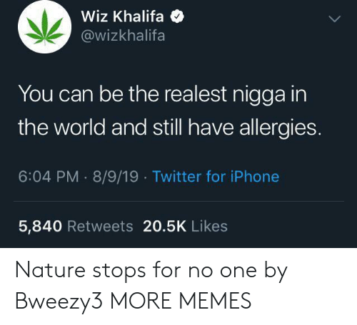 Khalifa: Wiz Khalifa  @wizkhalifa  You can be the realest nigga in  the world and still have allergies.  6:04 PM 8/9/19 Twitter for iPhone  5,840 Retweets 20.5K Likes Nature stops for no one by Bweezy3 MORE MEMES