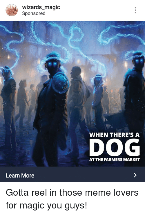 Meme, Magic, and Wizards: wizards_magic  Sponsored  WHEN THERE'S A  DOG  AT THE FARMERS MARKET  Learn More