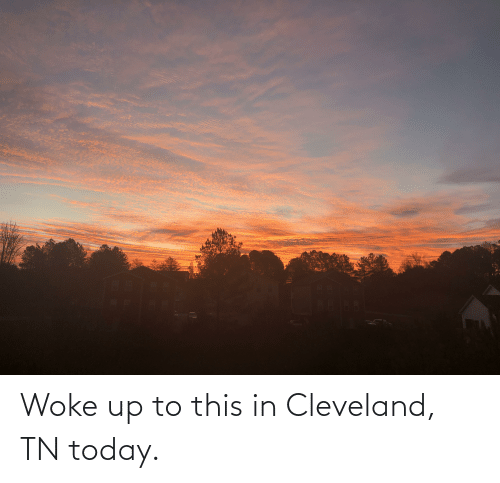 Cleveland Tn: Woke up to this in Cleveland, TN today.