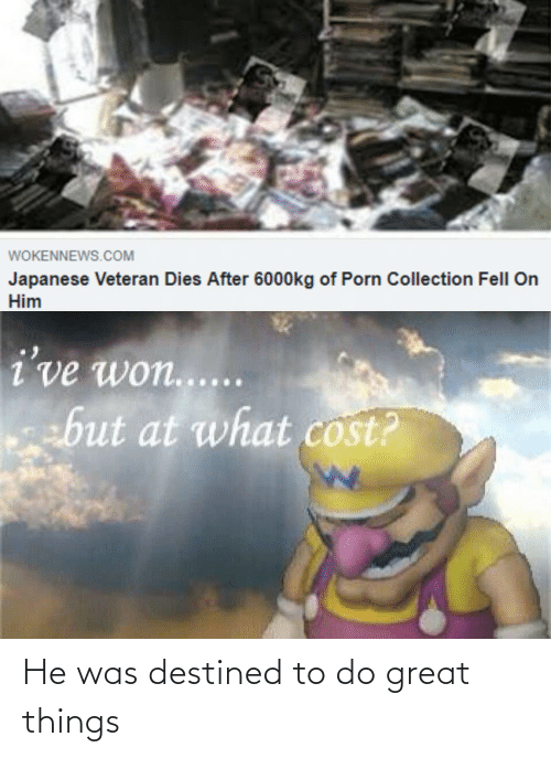 Dies: WOKENNEWS.COM  Japanese Veteran Dies After 6000kg of Porn Collection Fell On  Him  i've won.....  but at what cost? He was destined to do great things