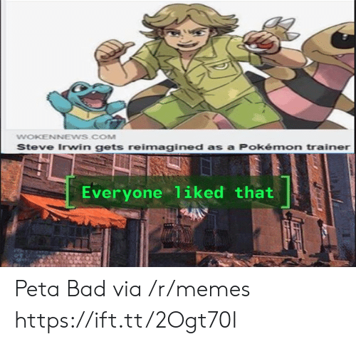 Bad, Memes, and Pokemon: WOKENNEWS.COM  Steve Irwin gets reimagined as a Pokémon trainer  Everyone 1iked that Peta Bad via /r/memes https://ift.tt/2Ogt70I