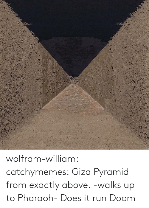pharaoh: wolfram-william: catchymemes: Giza Pyramid from exactly above.    -walks up to Pharaoh- Does it run Doom