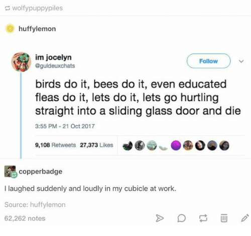 Oct 2017: wolfypuppypiles  huffylemon  im jocelyn  @guldeuxchats  Follow  birds do it, bees do it, even educated  fleas do it, lets do it, lets go hurtling  straight into a sliding glass door and die  3:55 PM-21 Oct 2017  9,108 Retweets 27,373 Likes  copperbadge  I laughed suddenly and loudly in my cubicle at work.  Source: huffylemon  62,262 notes