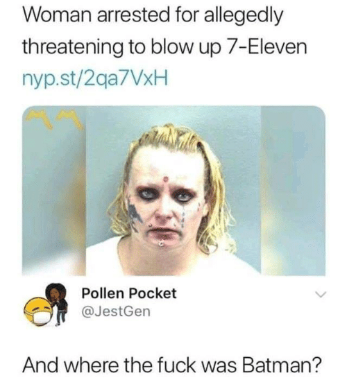 pollen: Woman arrested for allegedly  threatening to blow up 7-Eleven  nyp.st/2qa7VxH  Pollen Pocket  @JestGen  And where the fuck was Batman?