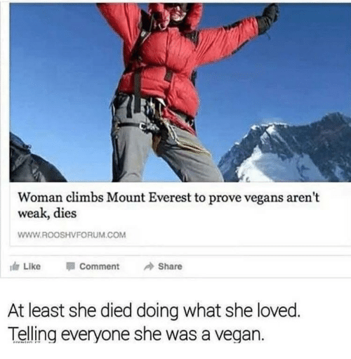 mount everest: Woman climbs Mount Everest to prove vegans arent  weak, dies  WWW.ROOSHVFORUM.COM  Like  Comment  Share  At least she died doing what she loved  Telling everyone she was a vegan.
