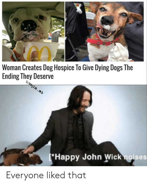 hospice: Woman Creates Dog Hospice To Give Dying Dogs The  Ending They Deserve  u/sejin .mb  *Happy John Wick noises Everyone liked that