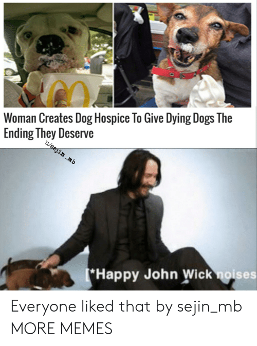 hospice: Woman Creates Dog Hospice To Give Dying Dogs The  Ending They Deserve  u/sejin .mb  *Happy John Wick noises Everyone liked that by sejin_mb MORE MEMES