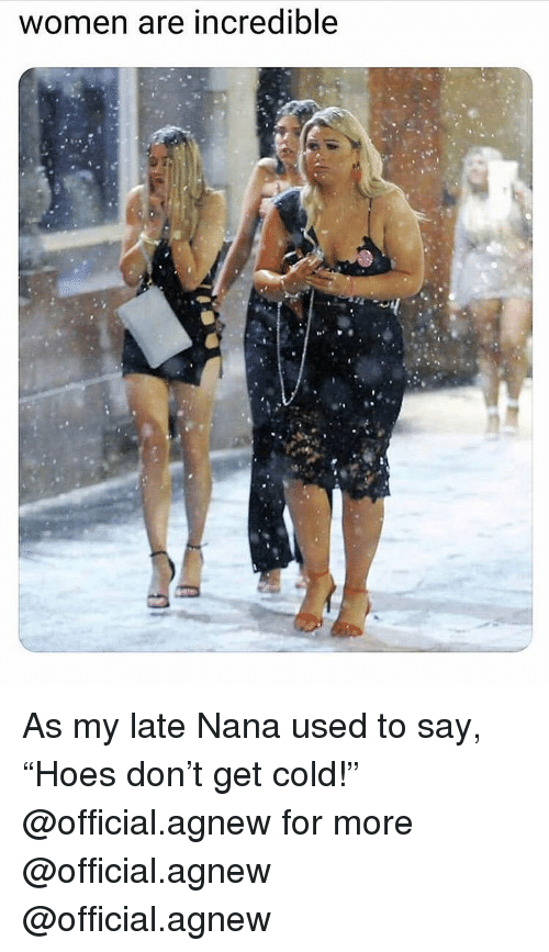 """Memes, Women, and Cold: women are incredible As my late Nana used to say, """"Hoes don't get cold!"""" @official.agnew for more @official.agnew @official.agnew"""