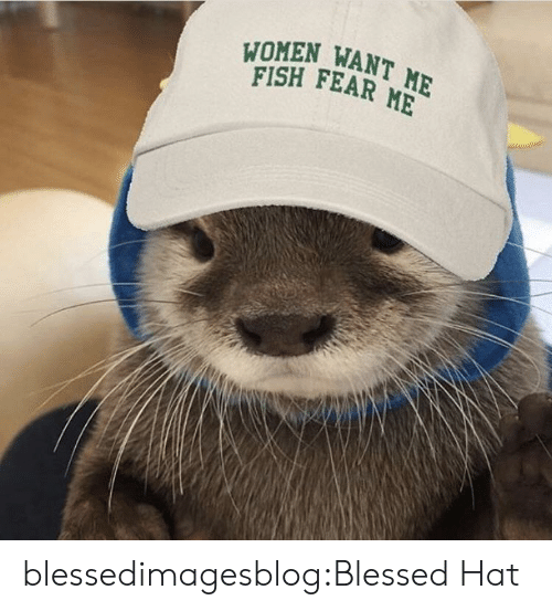 Blessed, Tumblr, and Blog: WOMEN WANT ME  FISH FEAR ME blessedimagesblog:Blessed Hat