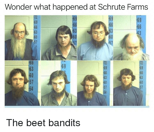 Schrute: Wonder what happened at Schrute Farms  69  63  63  69  63  57  54 The beet bandits