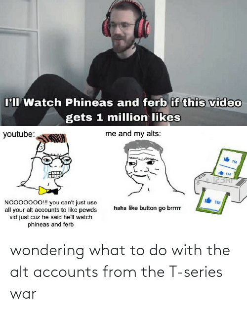 Alt Accounts: wondering what to do with the alt accounts from the T-series war