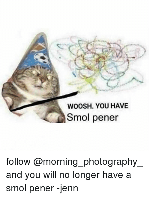 woosh: WOOSH. YOU HAVE  Smol pener follow @morning_photography_ and you will no longer have a smol pener -jenn