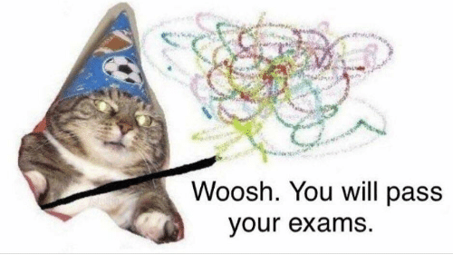 woosh: Woosh. You will pass  our exams