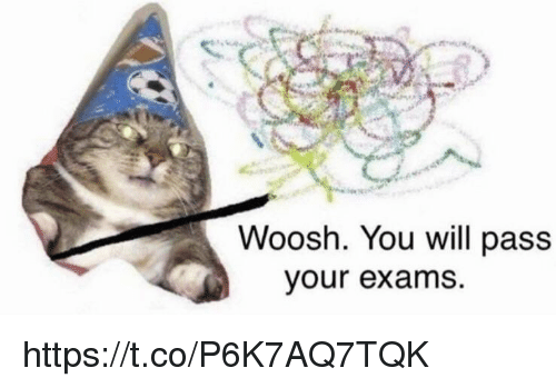 woosh: Woosh. You will pass  our exams. https://t.co/P6K7AQ7TQK