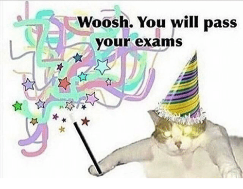 woosh: Woosh. You will pass  your exams