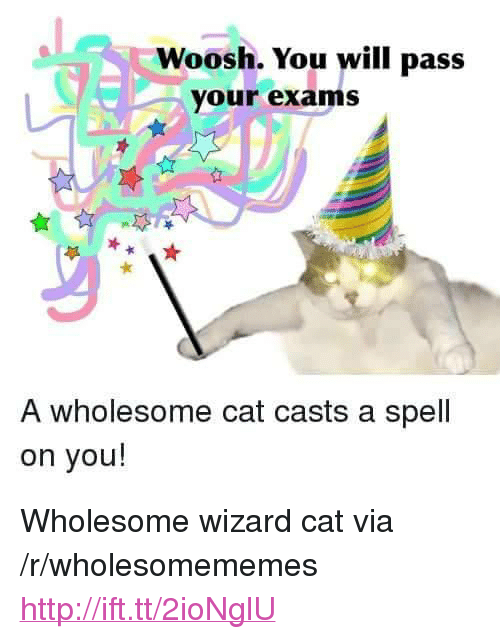 "woosh: Woosh. You will pass  your exams  A wholesome cat casts a spell  on you! <p>Wholesome wizard cat via /r/wholesomememes <a href=""http://ift.tt/2ioNglU"">http://ift.tt/2ioNglU</a></p>"
