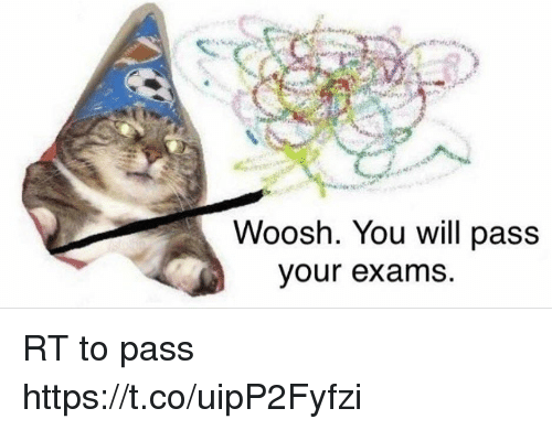 woosh: Woosh. You will pass  your exams RT to pass https://t.co/uipP2Fyfzi