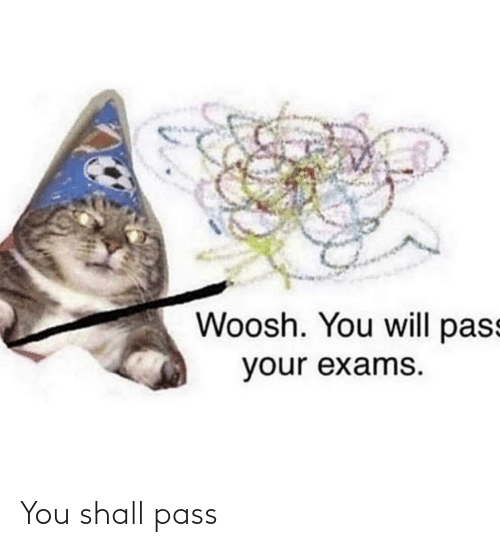 woosh: Woosh. You will pass  your exams. You shall pass