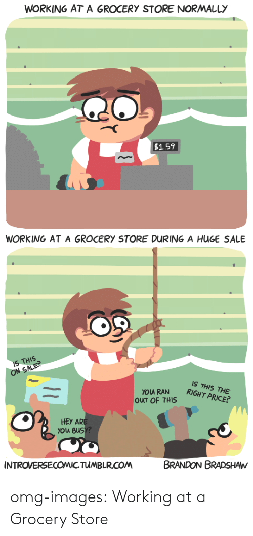 Omg, Tumblr, and Blog: WORKING AT A GROCERY STORE NORMALLY  1.59  WORKING AT A GROCERY STORE DURING A HUGE SALE  IS THIS  IS THIS THE  RIGHT PRICE?  OUT OF THS  HEy AR  you Bus  CO  BRANDON BRADSHAW  INTROVERSECOMIC.TUMBLR.COM omg-images:  Working at a Grocery Store