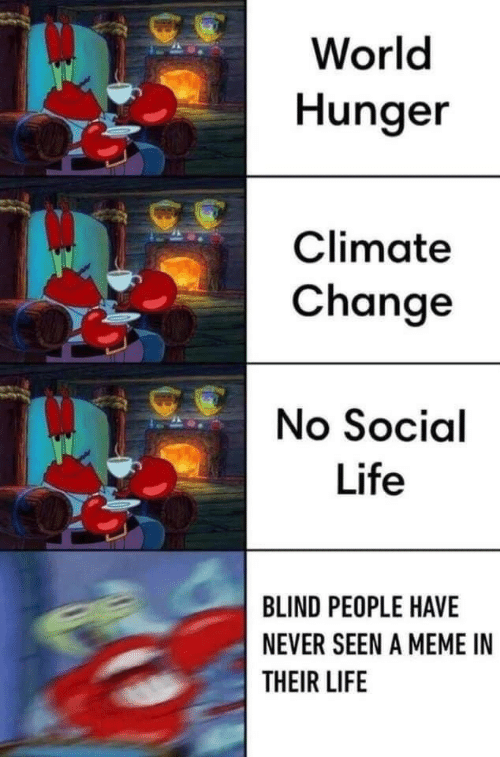 world hunger: World  Hunger  Climate  Change  No Social  Life  BLIND PEOPLE HAVE  NEVER SEEN A MEME IN  THEIR LIFE